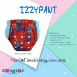 Izzypant Clodi Pant All in One Klodiz Pant AiO